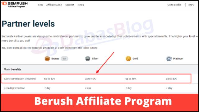 Berush affiliate program